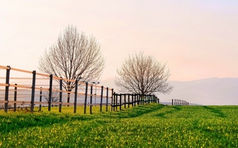 fence-on-the-green-field-nature-hd-wallpaper