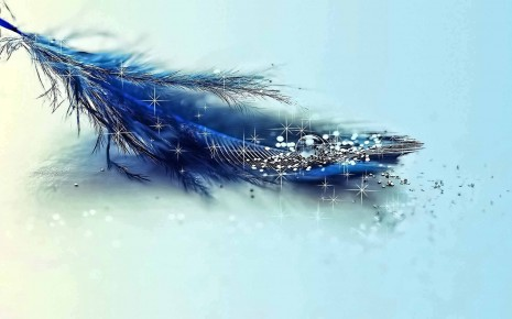 Cool-Blue-feather d-art