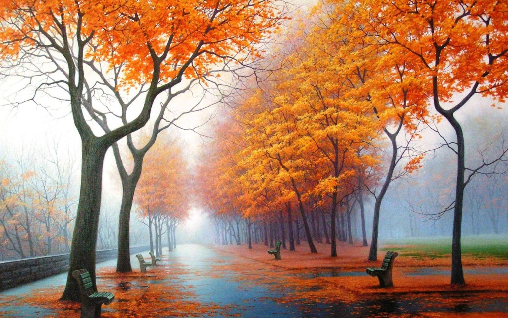 Morning Foggy autumn Hd wallpaper
