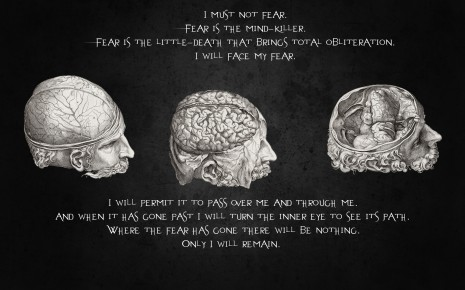 Quotes Brain HD wallpaper