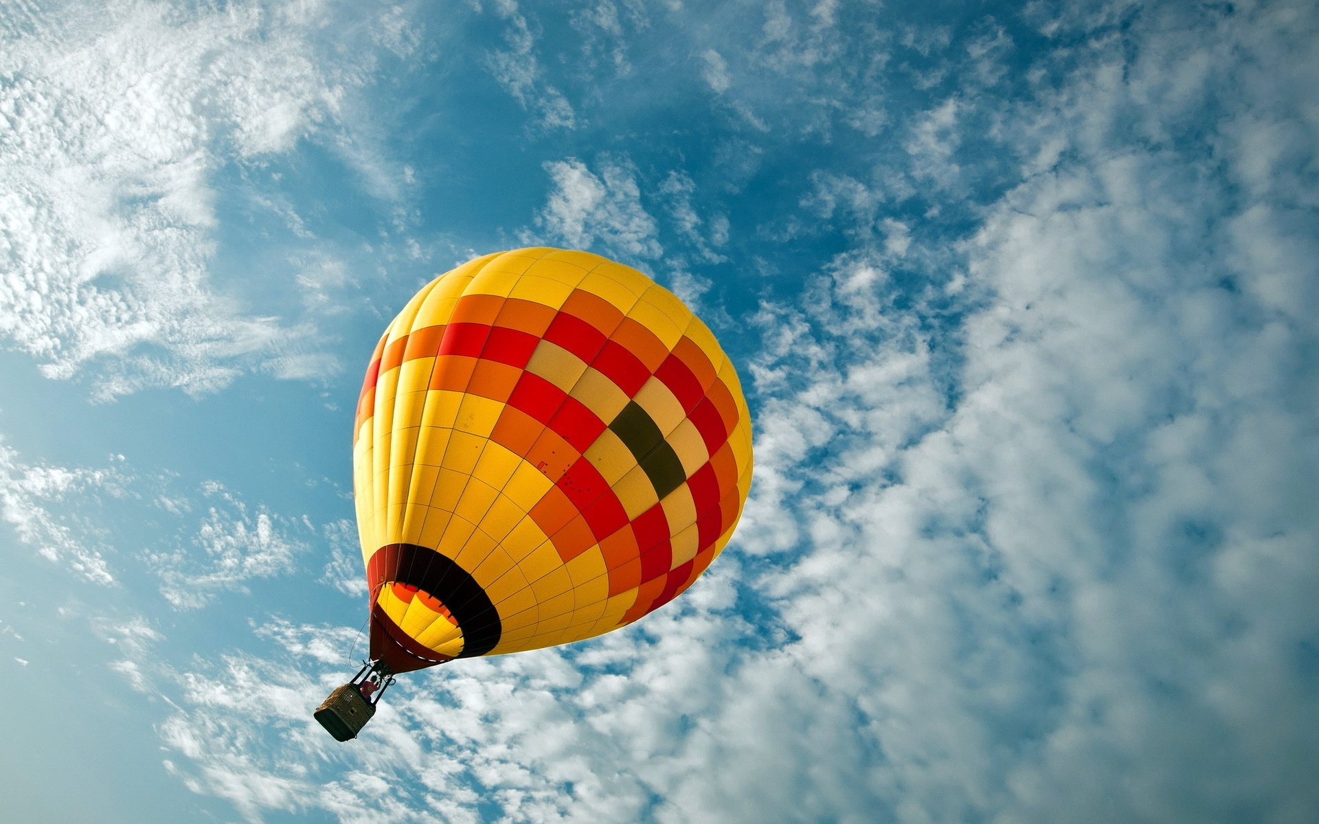 Hot Air Balloon Hd Wallpaper Hd Latest Wallpapers
