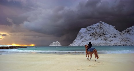 mountain winter mood horse beach HD wallpaper