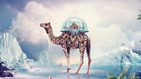 Camel carrying the Taj Mahal wallpaper