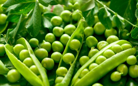 Green vegetables peas HD wallpaper