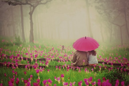 Mood man woman girl flowers wallpaper