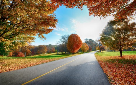 Nature landscapes roads trees leaves autumn fall seasons colors sky clouds sunlight wallpaper