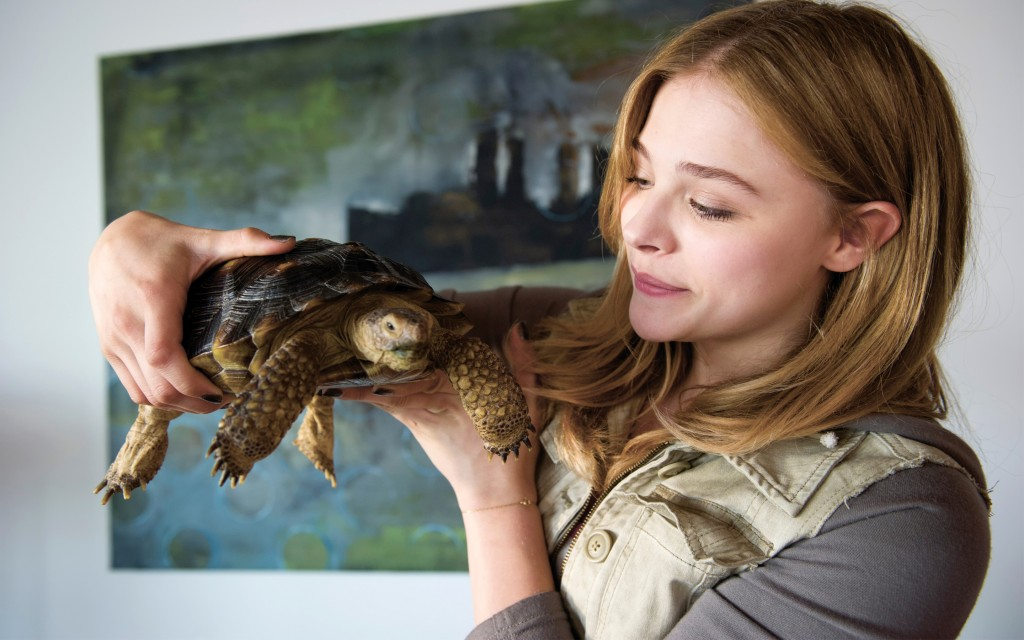 chloe_moretz_in_laggies-wide