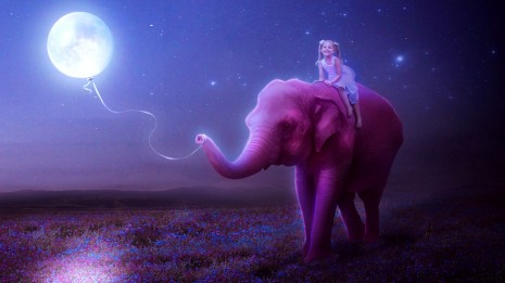 little girl on pink elephant