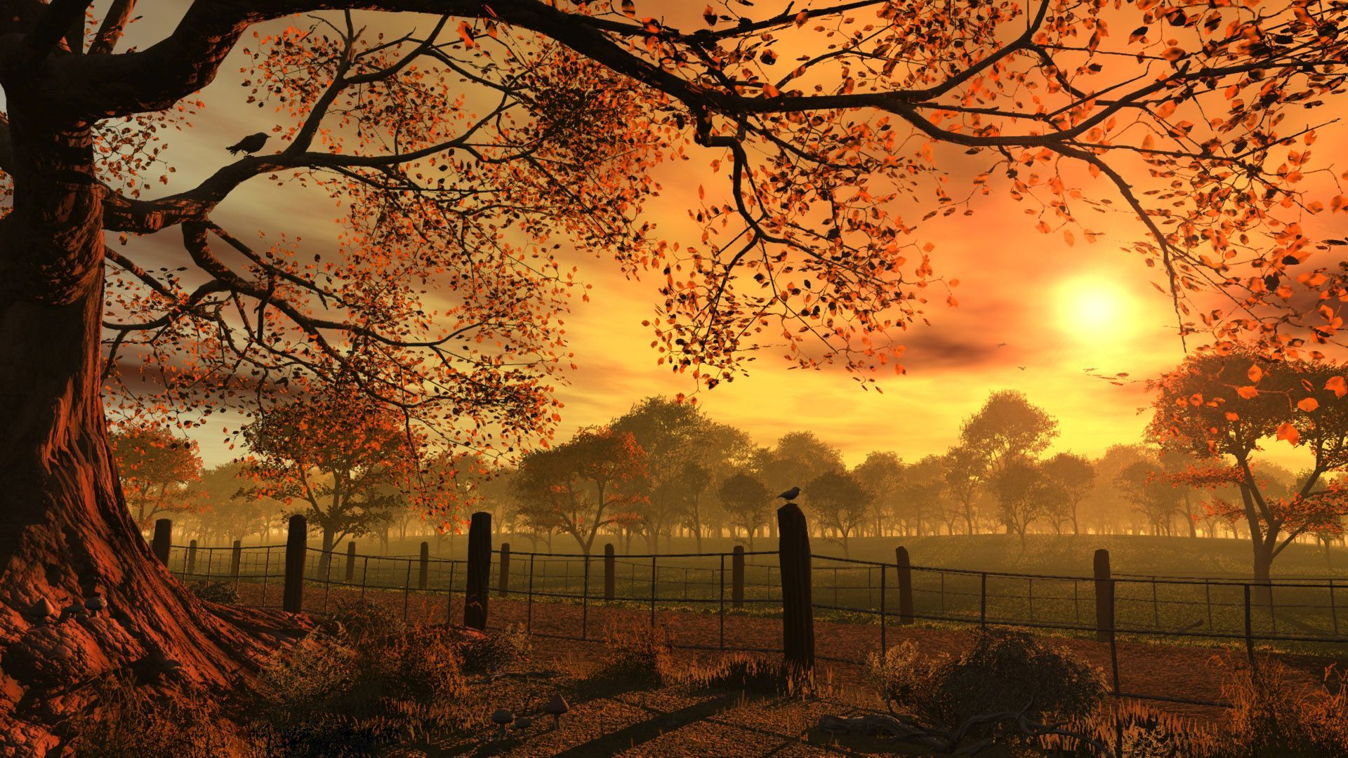 superb autumn sunset hd wallpaper | hd latest wallpapers