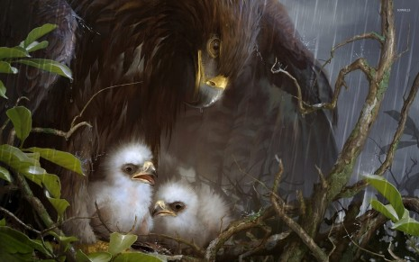 Eagle nest HD wallpaper