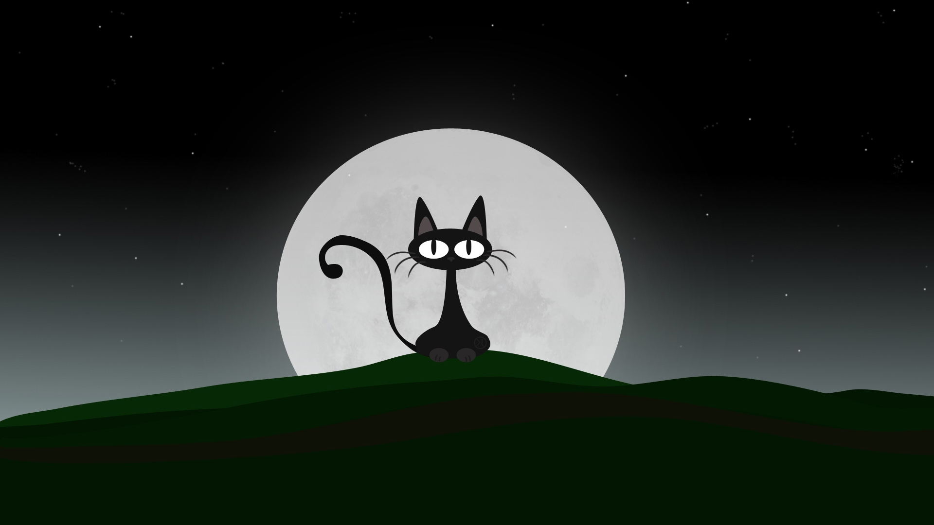 cat-in-the-night-hd-wallpaper