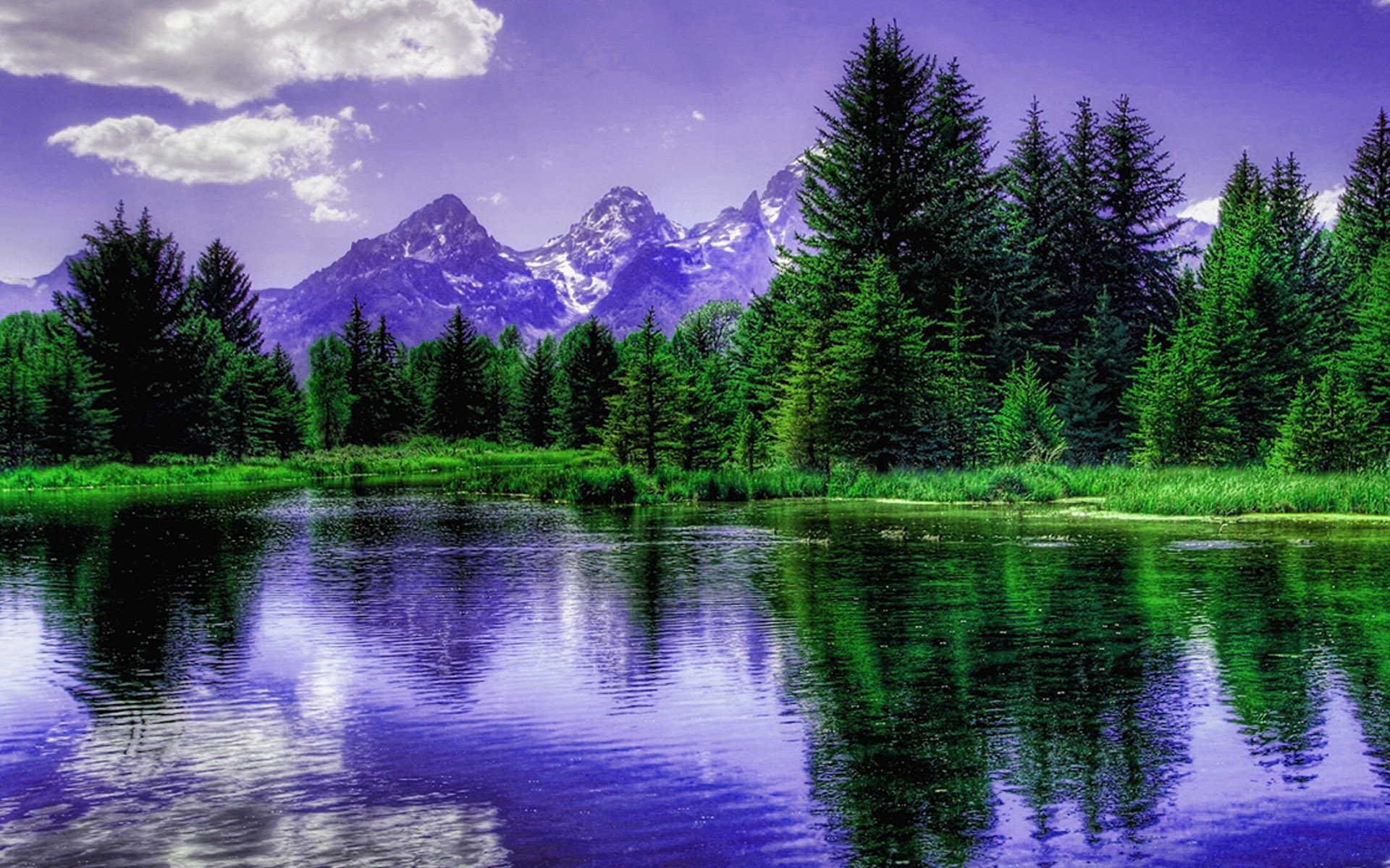 purple-mountains-behind-the-trees-hd-wallpaper