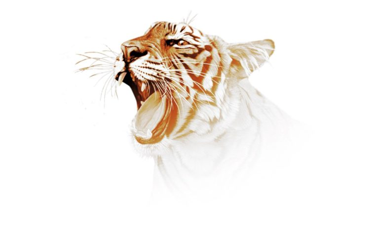 Digital Art Tiger HD wallpaper