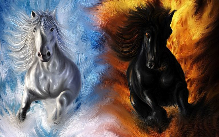 Horses HD wallpaper