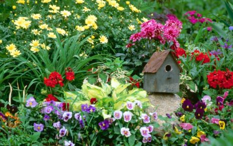 Flower Gardens wallpaper