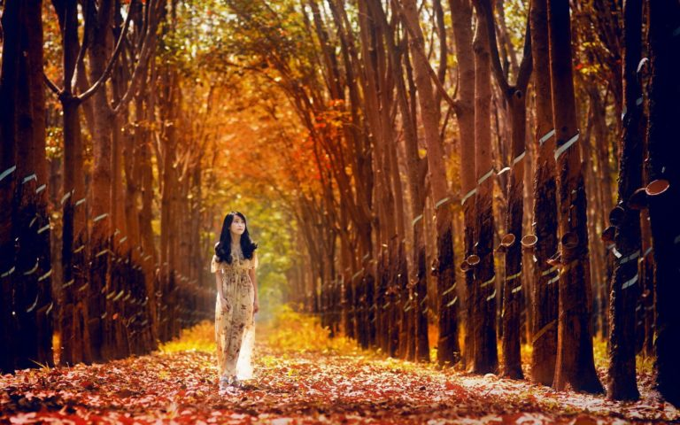 Girl walking in forest Wallpaper
