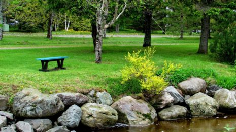 Bench In The Park HD Wallpaper