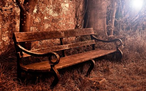 Old Bench HD Wallpaper