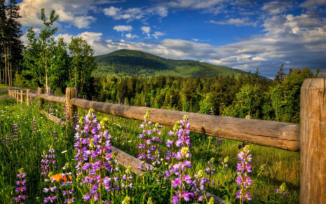Wooden fence in the mountains HD wallpaper