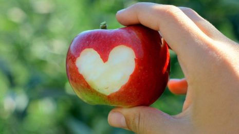 Love apples HD wallpaper