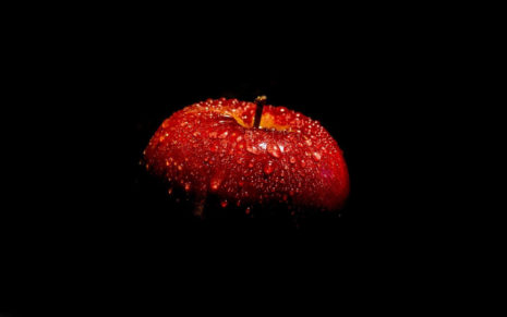 Wet Apple in the shadows