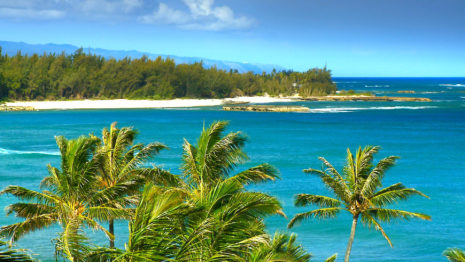 Hawaii Beaches HD wallpaper