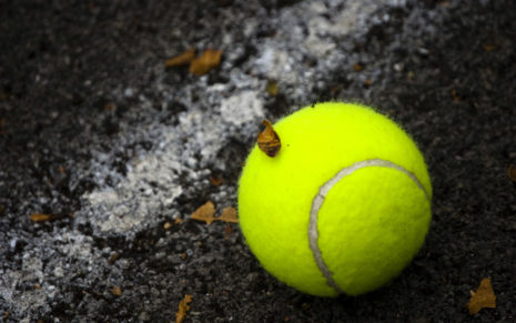 Tennis Ball on floor HD wallpaper