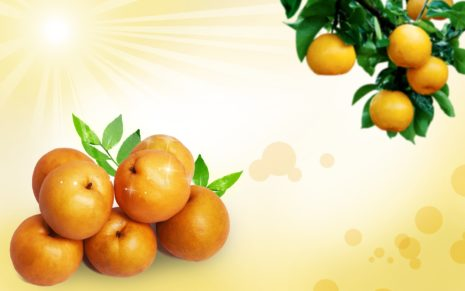 Fruits PSD HD wallpaper