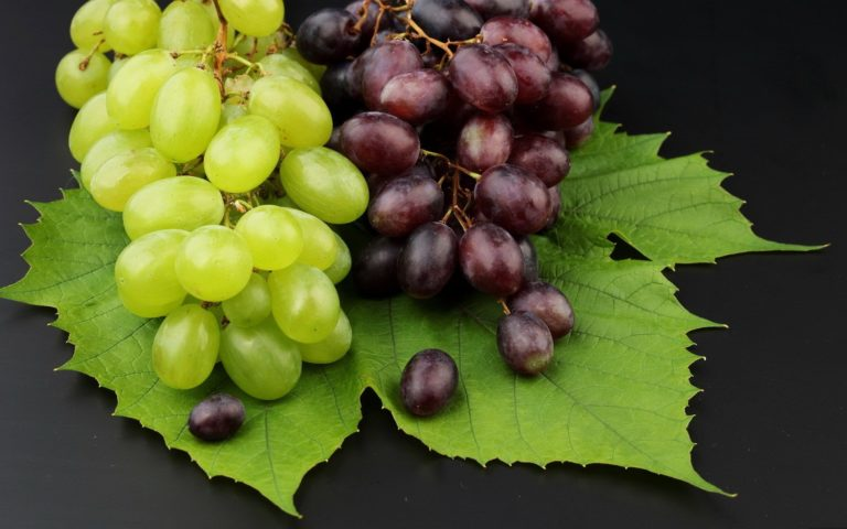 Grapes Fruit HD wallpaper 1