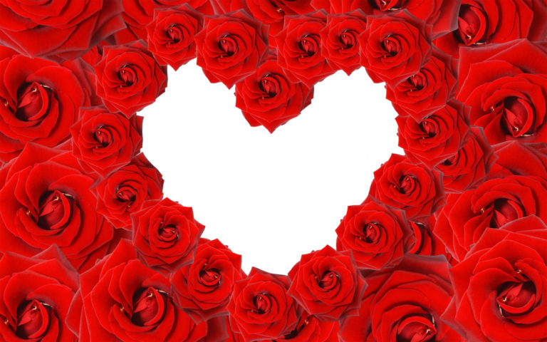 Heart Roses HD wallpaper
