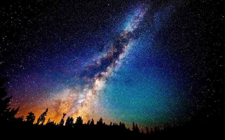 Milky Way above fir forest HD wallpaper 1