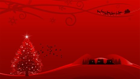 Red Christmas arrangements HD wallpaper