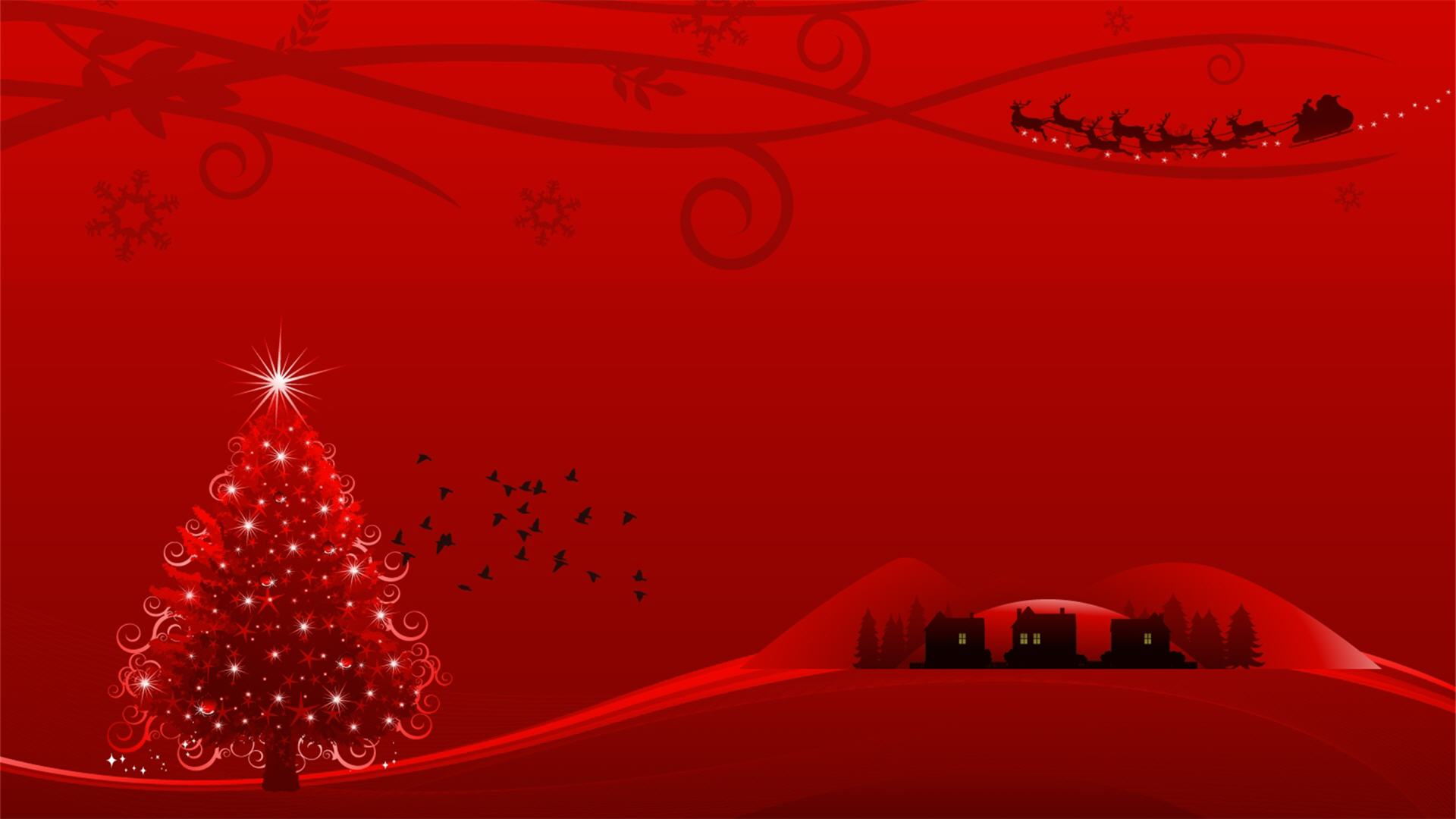 red christmas arrangements hd wallpaper hd latest wallpapers