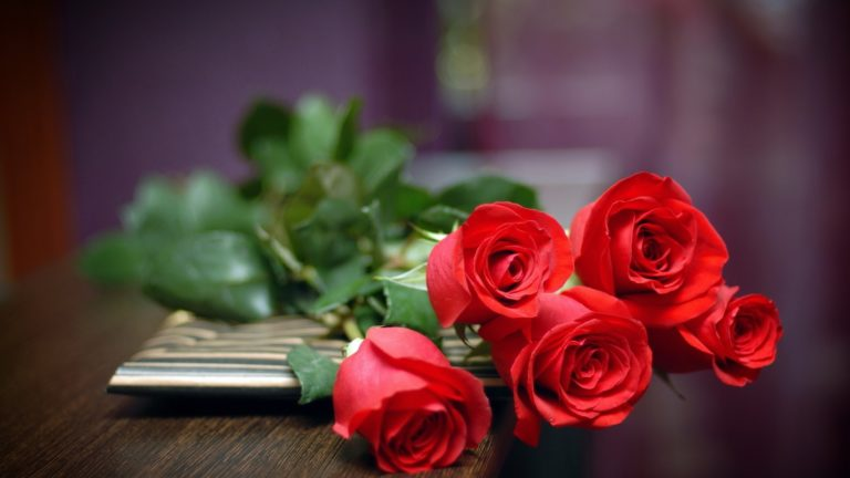 Red roses on table HD wallpaper