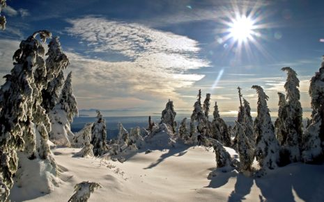 Winter Sun HD wallpaper