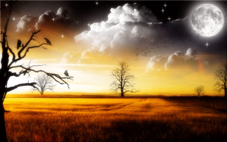 Amber Sky HD wallpaper