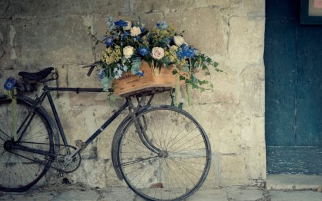 Bicycle Flowers HD wallpaper