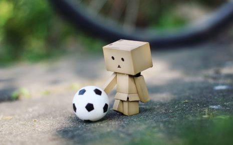 Danbo & flowers HD wallpaper