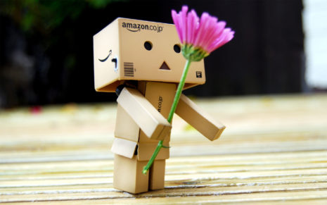 Toy and flower HD wallpaper