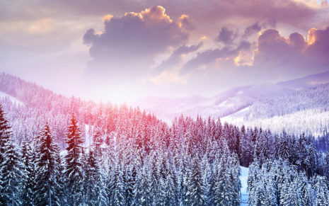 Beauty of winter landscape HD wallpaper