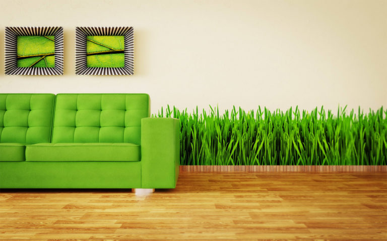 Grass & Green Sofas interior HD wallpaper