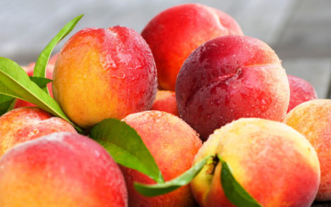 Peaches Nectarines and leaves HD wallpaper