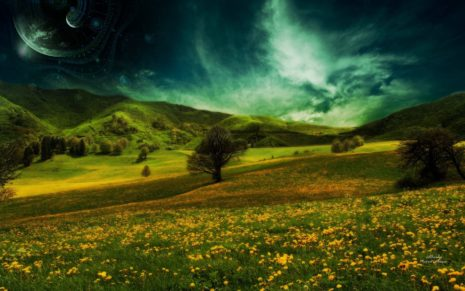 Refreshing beauty of meadows HD wallpaper
