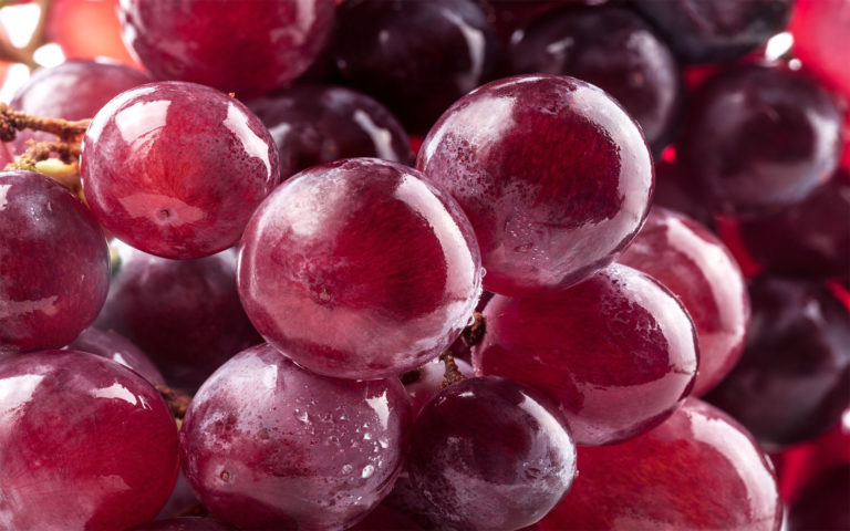 Ripe & shiny grapes HD wallpaper
