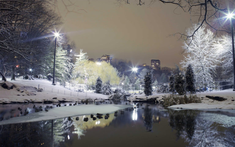 Snowy park HD wallpaper