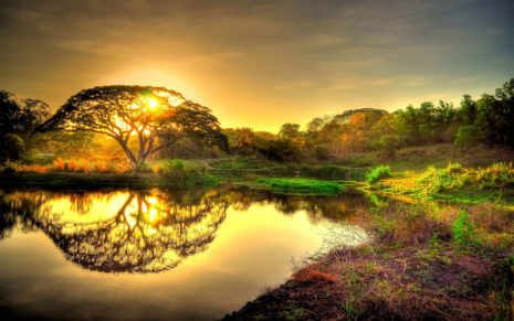 Sunset over the pond HD wallpaper