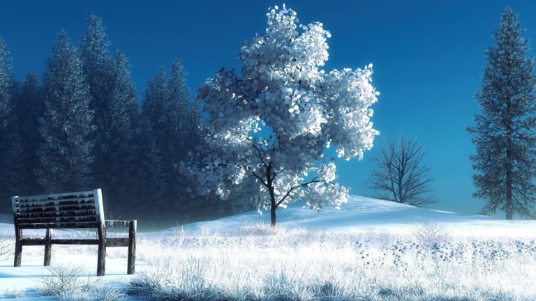 Bench covered in snow HD wallpaper