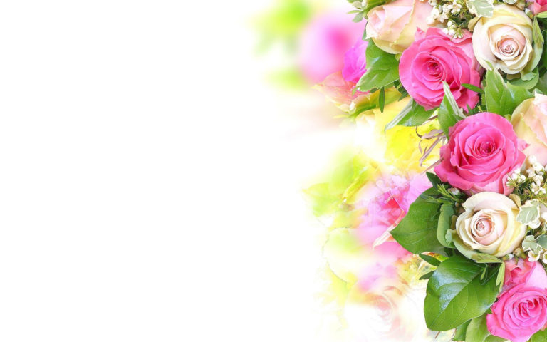 Gift of flowers HD wallpaper