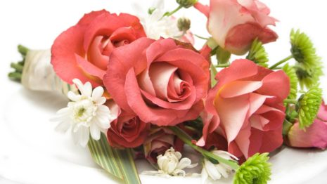 Pink Bouquet composition HD wallpaper