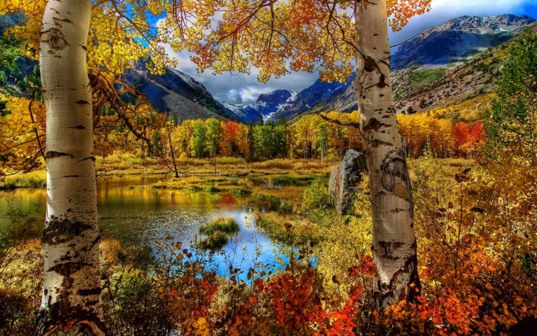Russian Autumn HD wallpaper